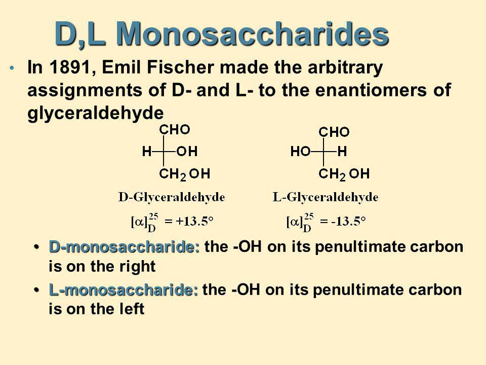 D,L Monosaccharides In 1891, Emil Fischer made the arbitrary assignments of D- and L- to the enantiomers of glyceraldehyde.