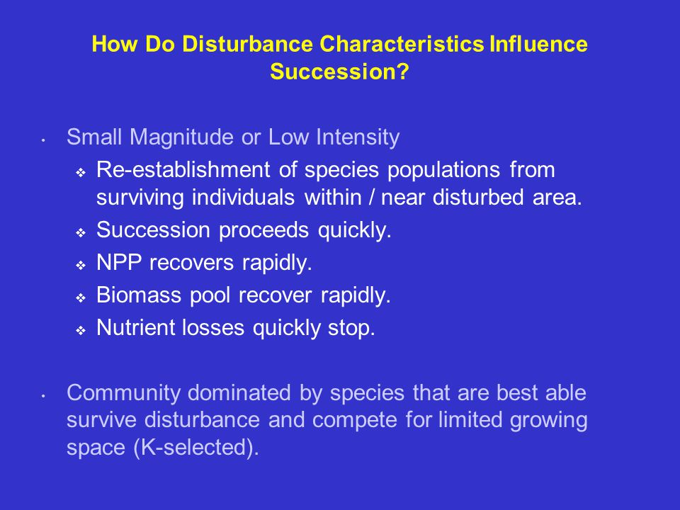 How Do Disturbance Characteristics Influence Succession