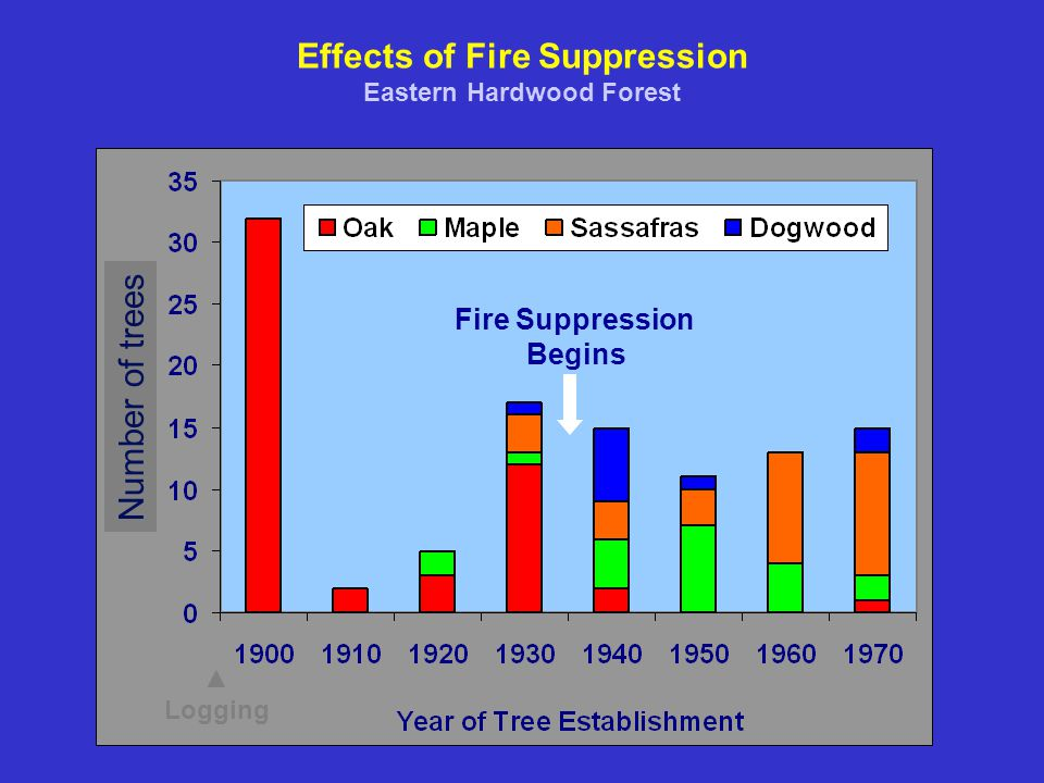 Effects of Fire Suppression Eastern Hardwood Forest