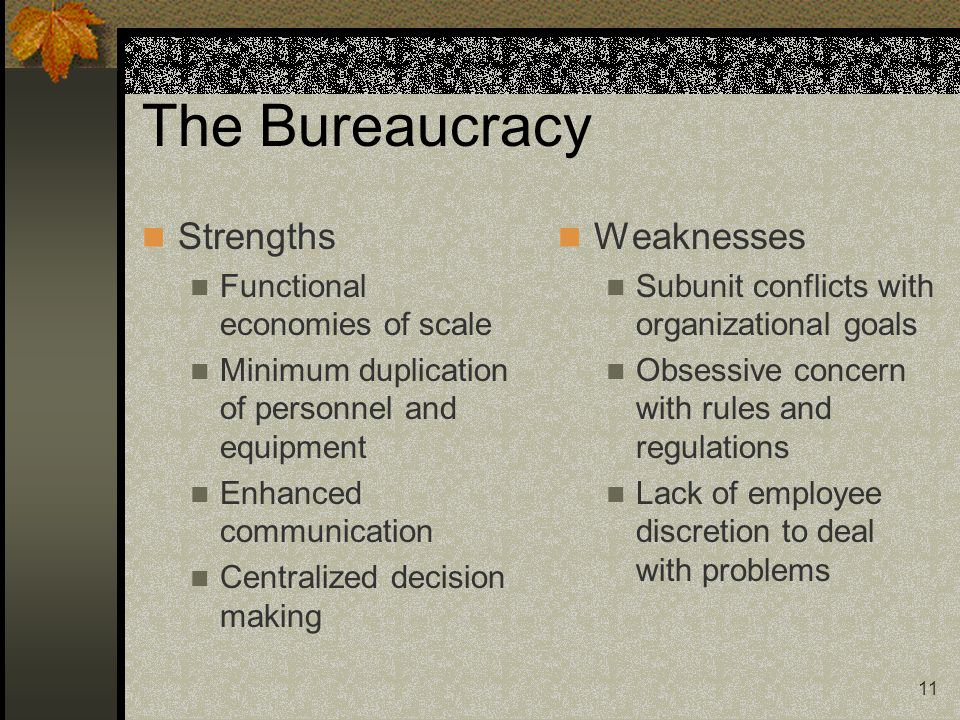 The Bureaucracy Strengths Weaknesses Functional economies of scale