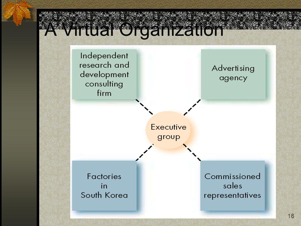 A Virtual Organization