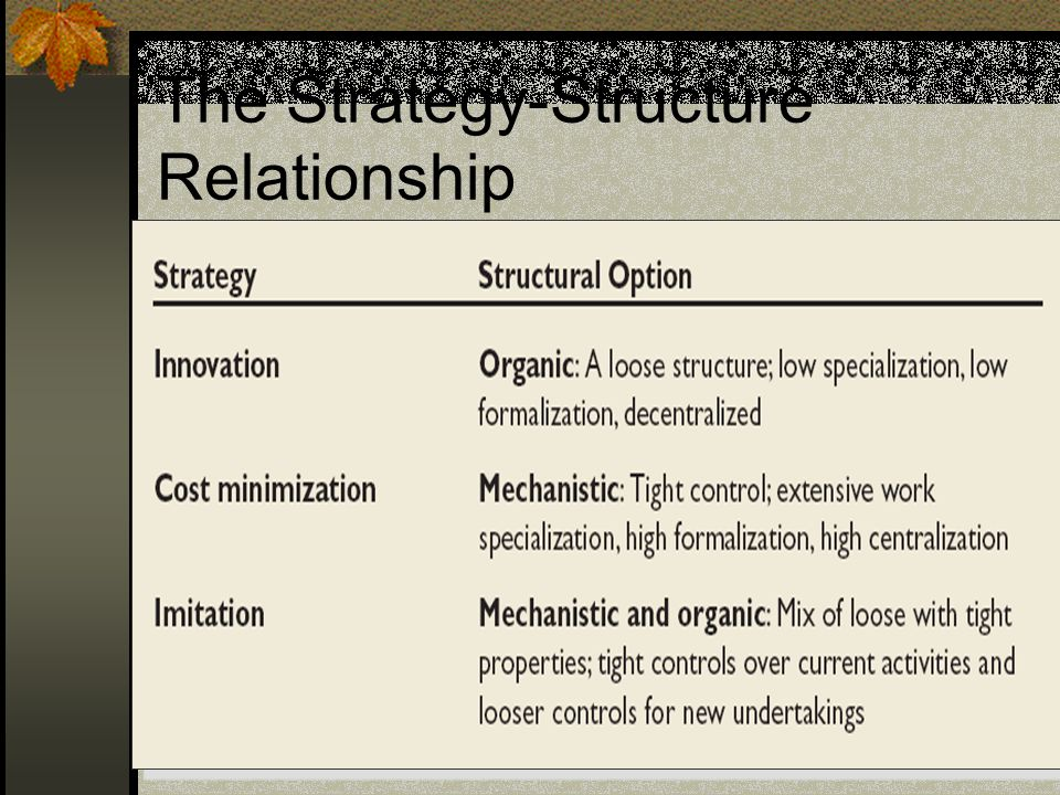 The Strategy-Structure Relationship