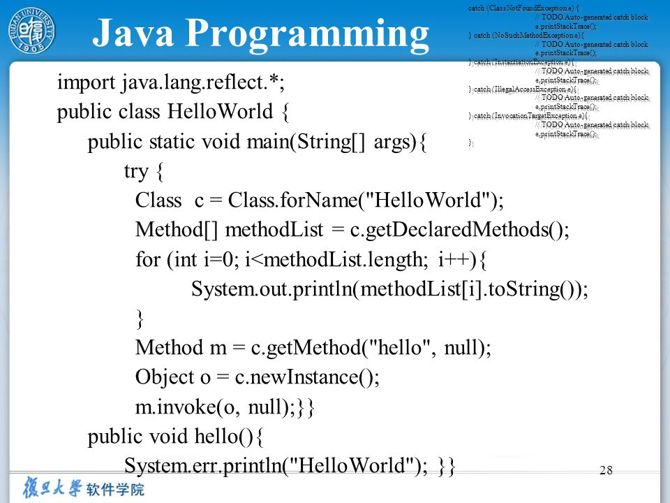 Java Programming import java.lang.reflect.*; public class HelloWorld {