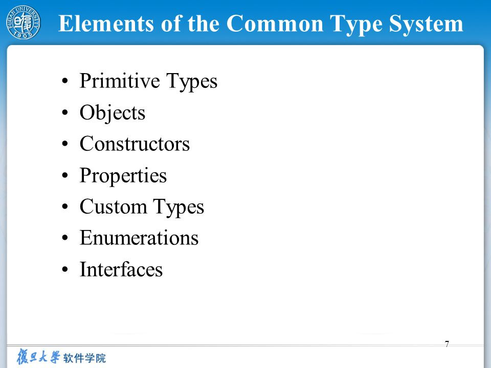 Elements of the Common Type System