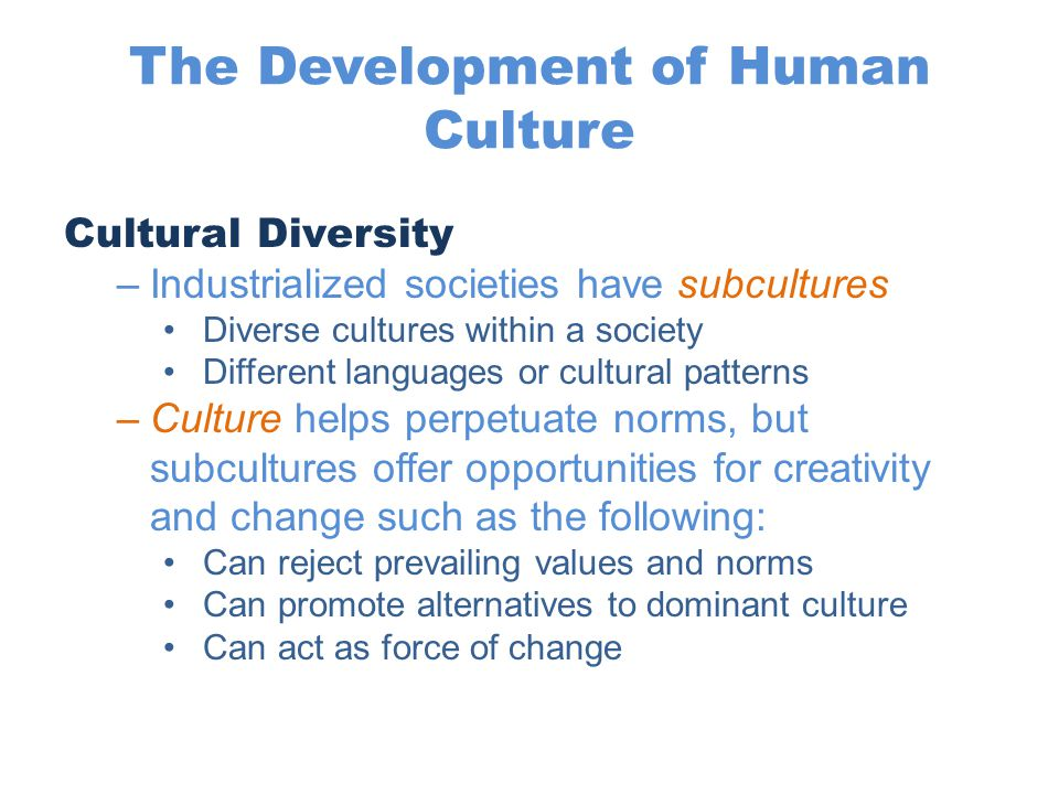 The Development of Human Culture