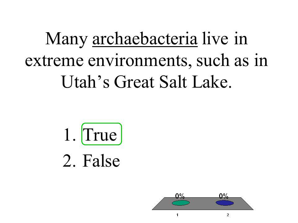 Many archaebacteria live in extreme environments, such as in Utah's Great Salt Lake.