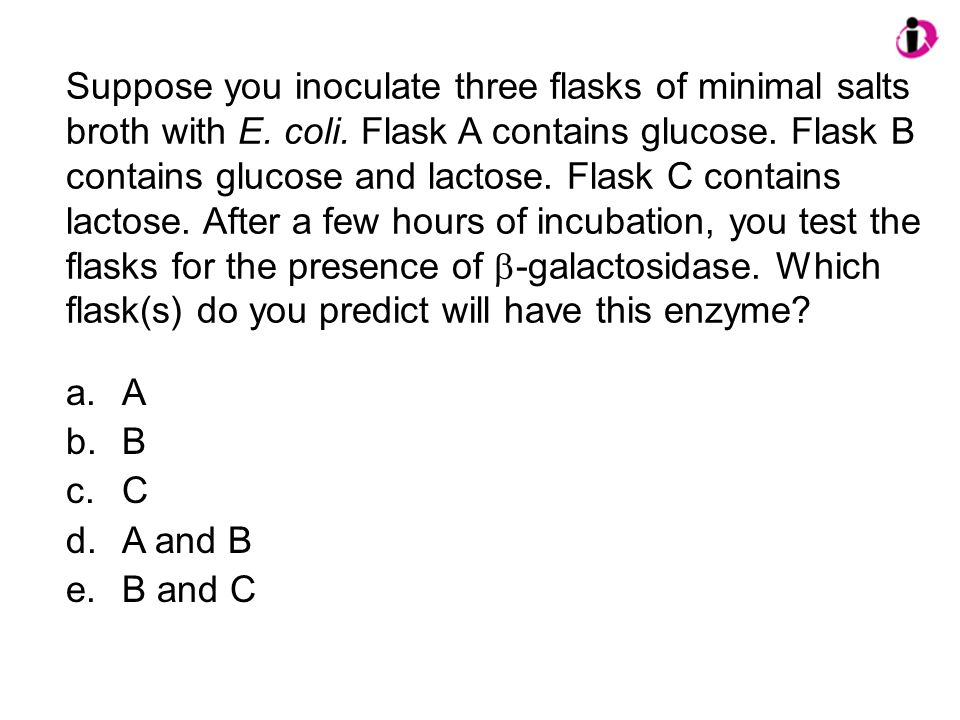 Suppose you inoculate three flasks of minimal salts broth with E. coli