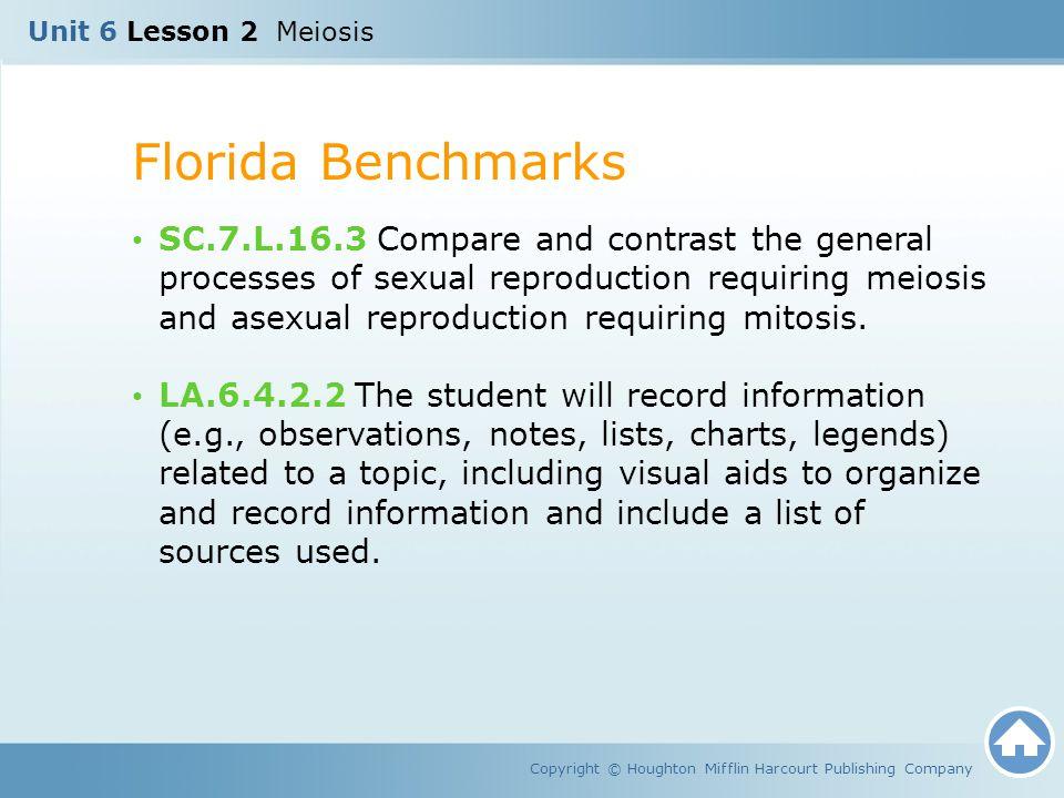 Unit 6 Lesson 2 Meiosis Florida Benchmarks.