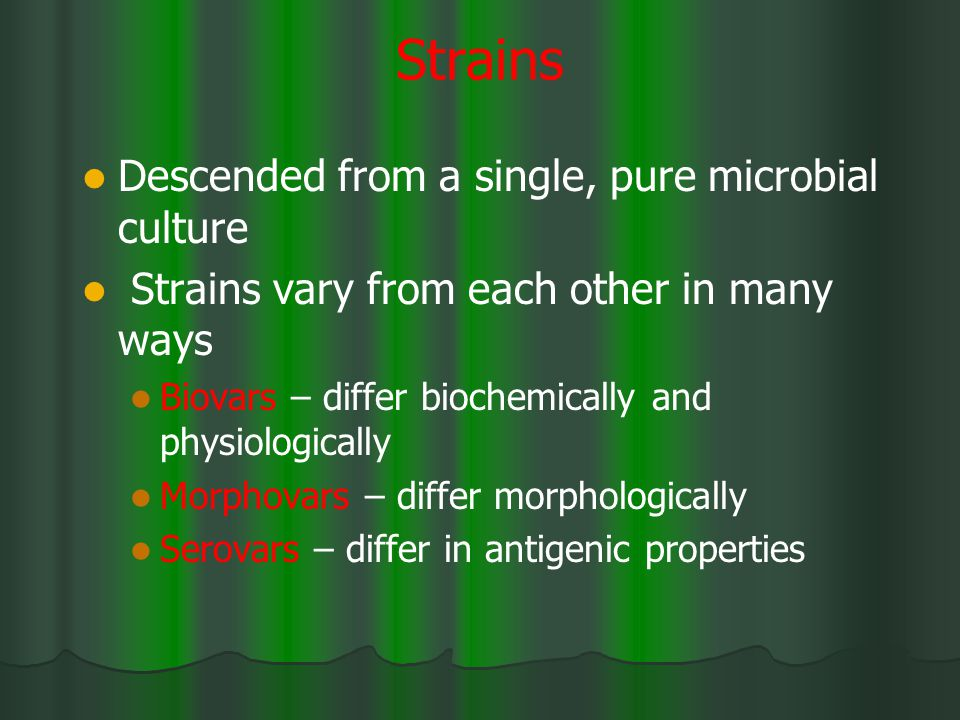 Strains Descended from a single, pure microbial culture