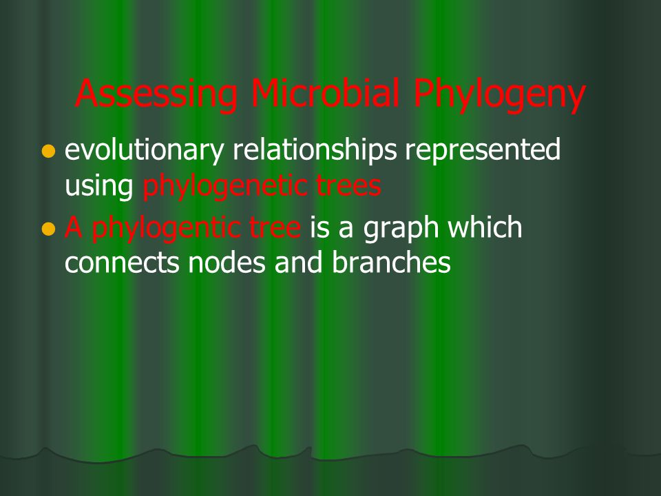 Assessing Microbial Phylogeny