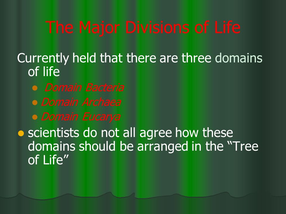 The Major Divisions of Life
