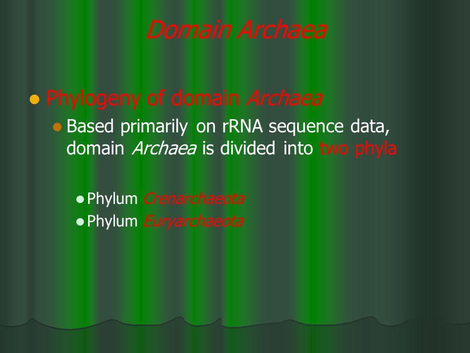 Domain Archaea Phylogeny of domain Archaea