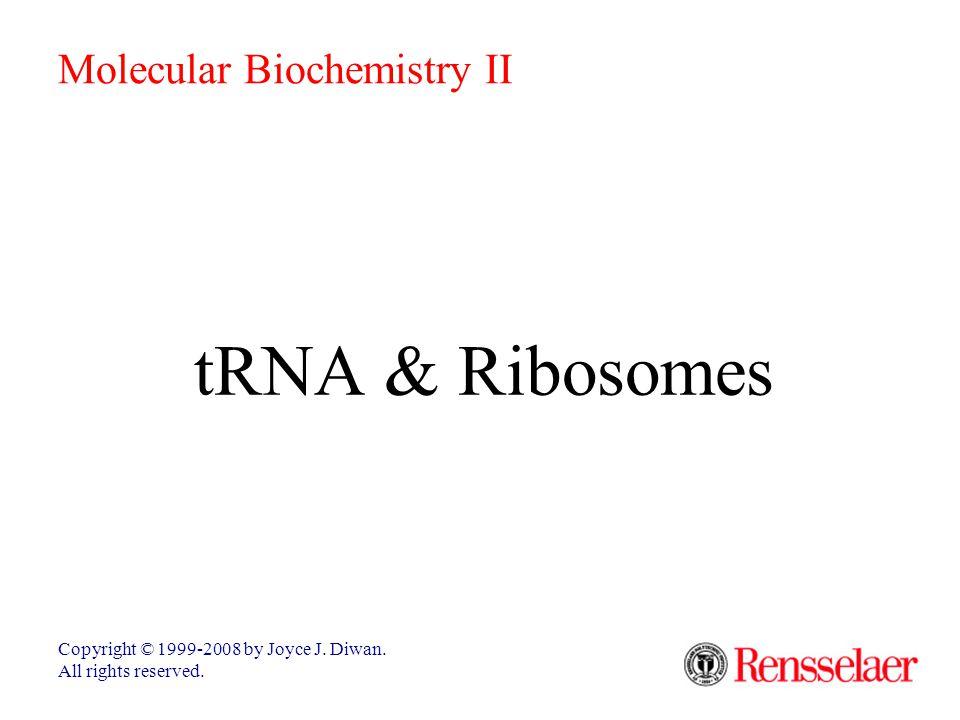 tRNA & Ribosomes Molecular Biochemistry II