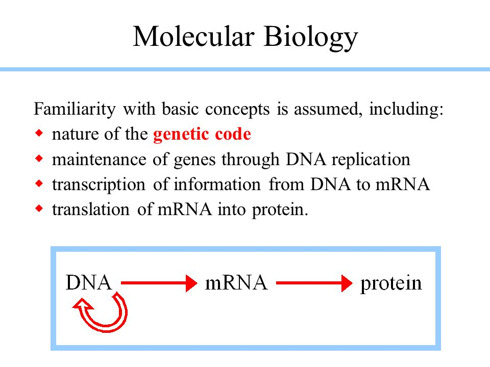 Molecular Biology Familiarity with basic concepts is assumed, including: nature of the genetic code.