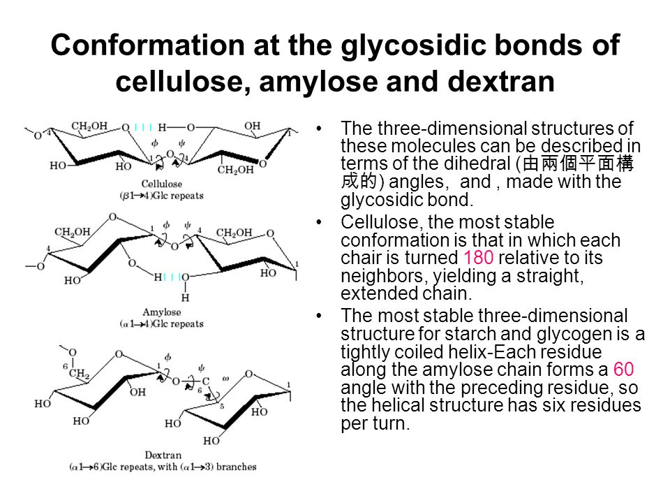 Conformation at the glycosidic bonds of cellulose, amylose and dextran