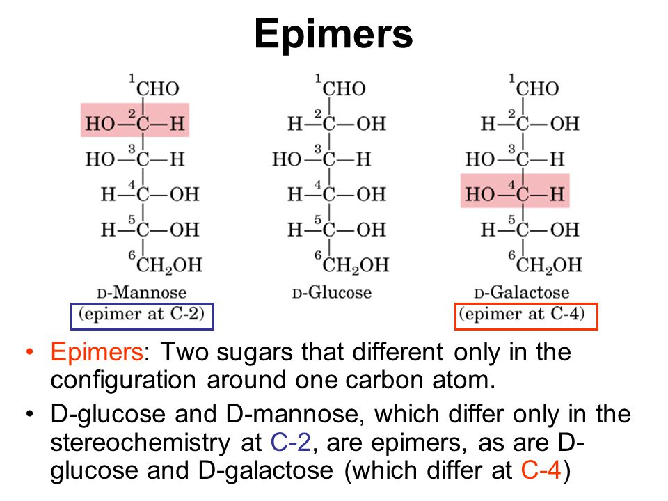 Epimers Epimers: Two sugars that different only in the configuration around one carbon atom.