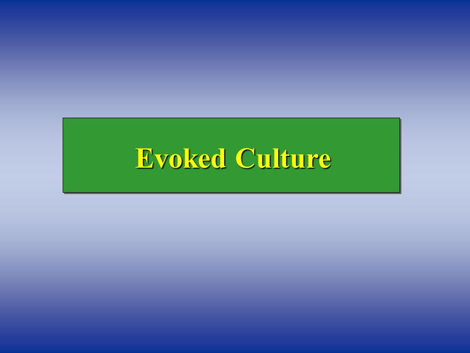 Evoked Culture