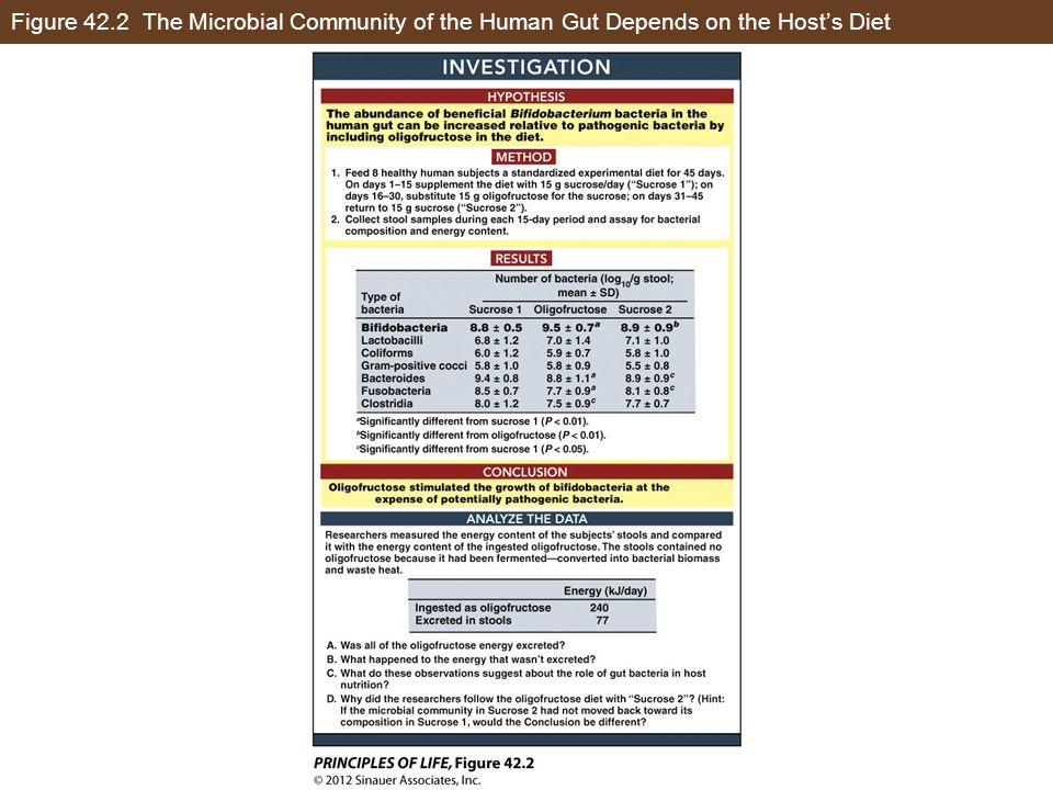 Figure 42.2 The Microbial Community of the Human Gut Depends on the Host's Diet