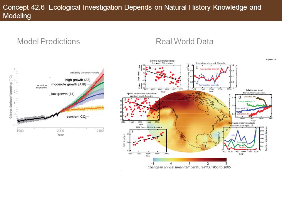 Model Predictions Real World Data