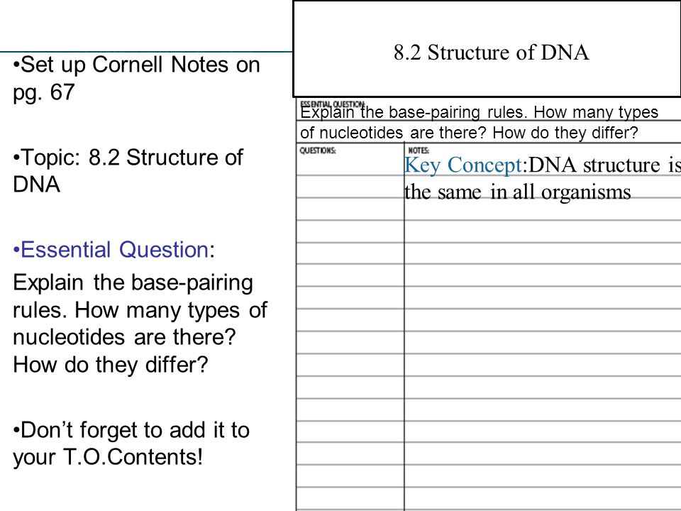 Set up Cornell Notes on pg. 67
