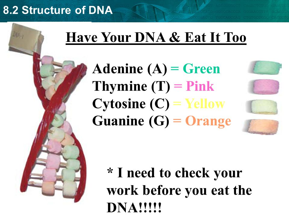 Have Your DNA & Eat It Too