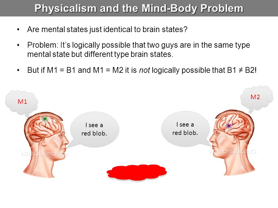 Physicalism and the Mind-Body Problem