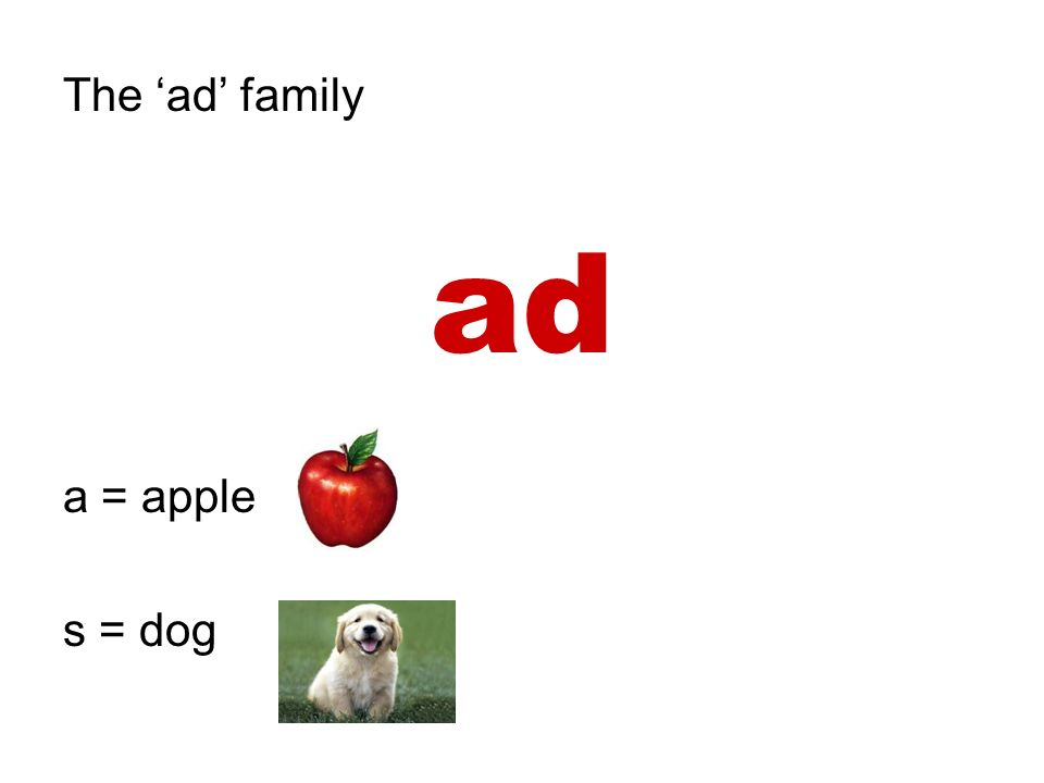 The 'ad' family ad a = apple s = dog