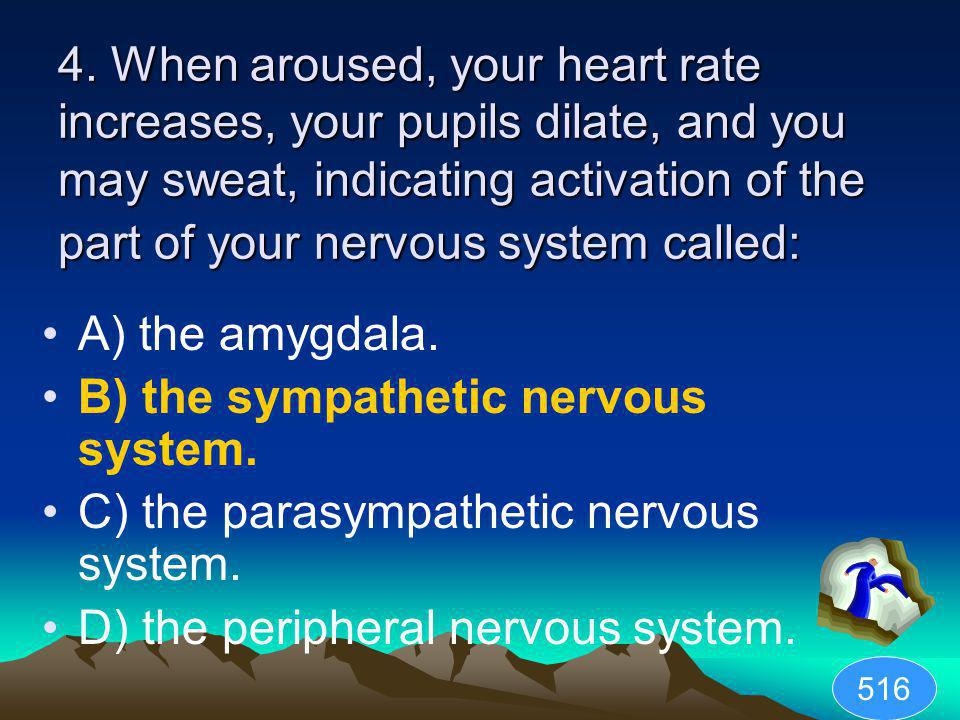 B) the sympathetic nervous system.