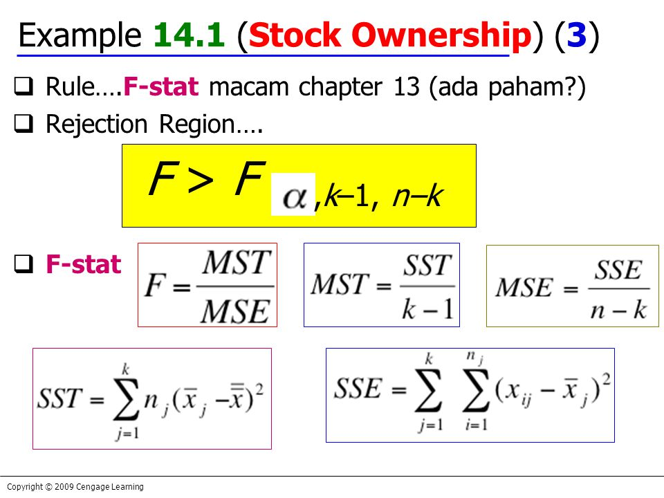 Example 14.1 (Stock Ownership) (3)