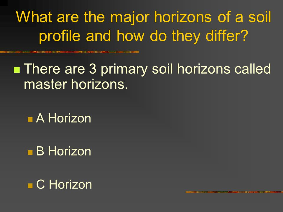What are the major horizons of a soil profile and how do they differ