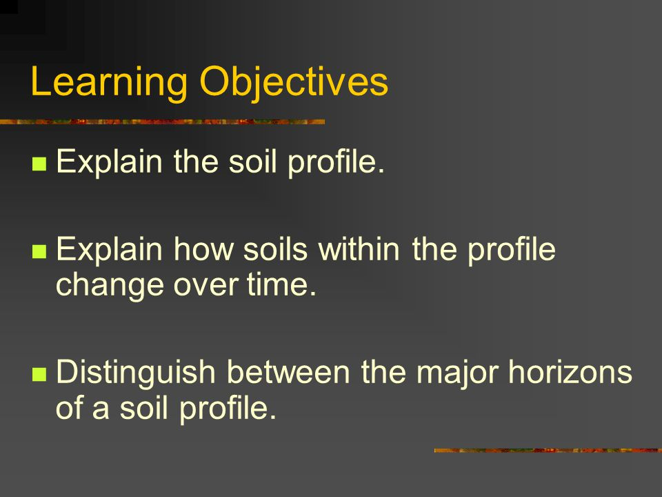 Learning Objectives Explain the soil profile.
