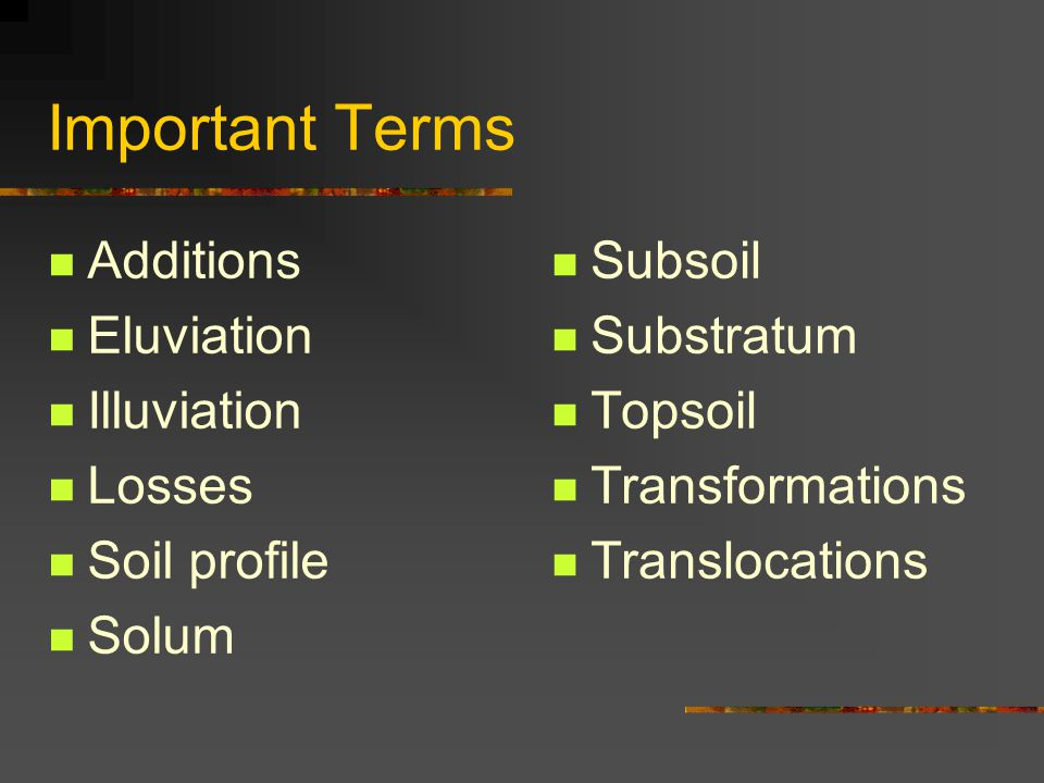 Important Terms Additions Eluviation Illuviation Losses Soil profile