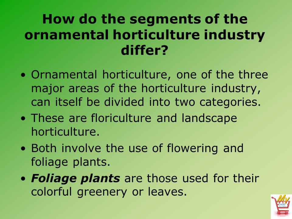 How do the segments of the ornamental horticulture industry differ