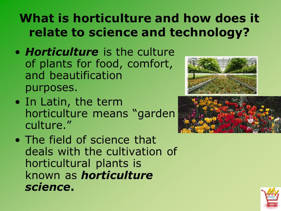 What is horticulture and how does it relate to science and technology