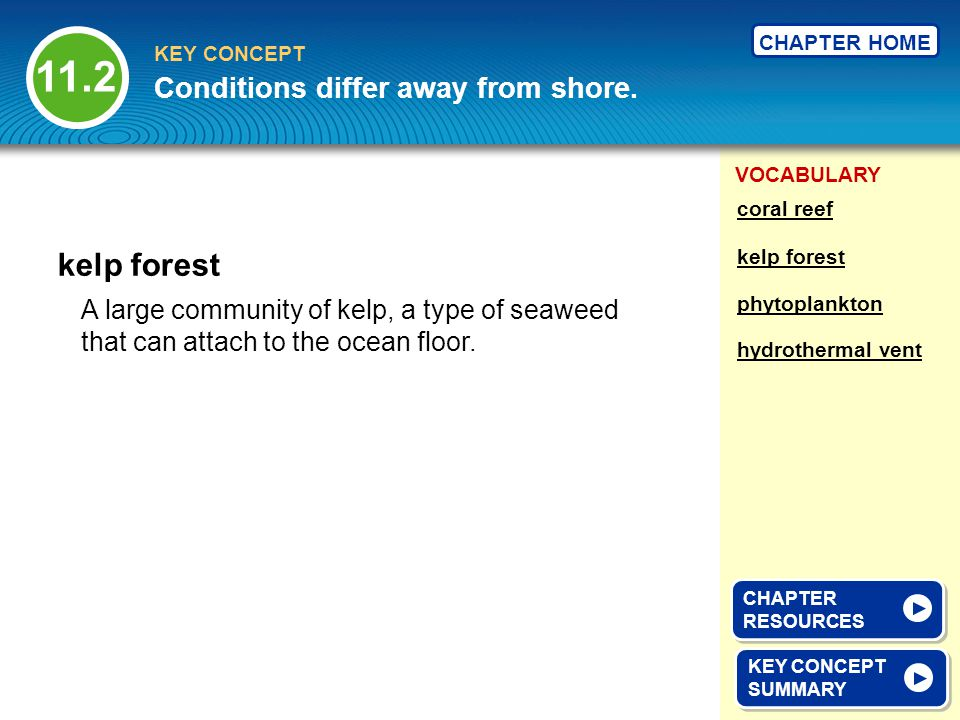 11.2 kelp forest Conditions differ away from shore.