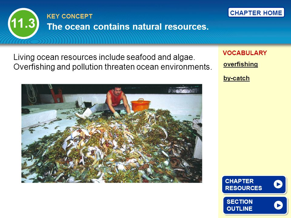 The ocean contains natural resources.