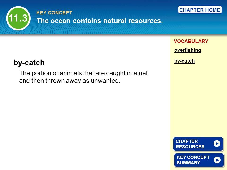11.3 by-catch The ocean contains natural resources.