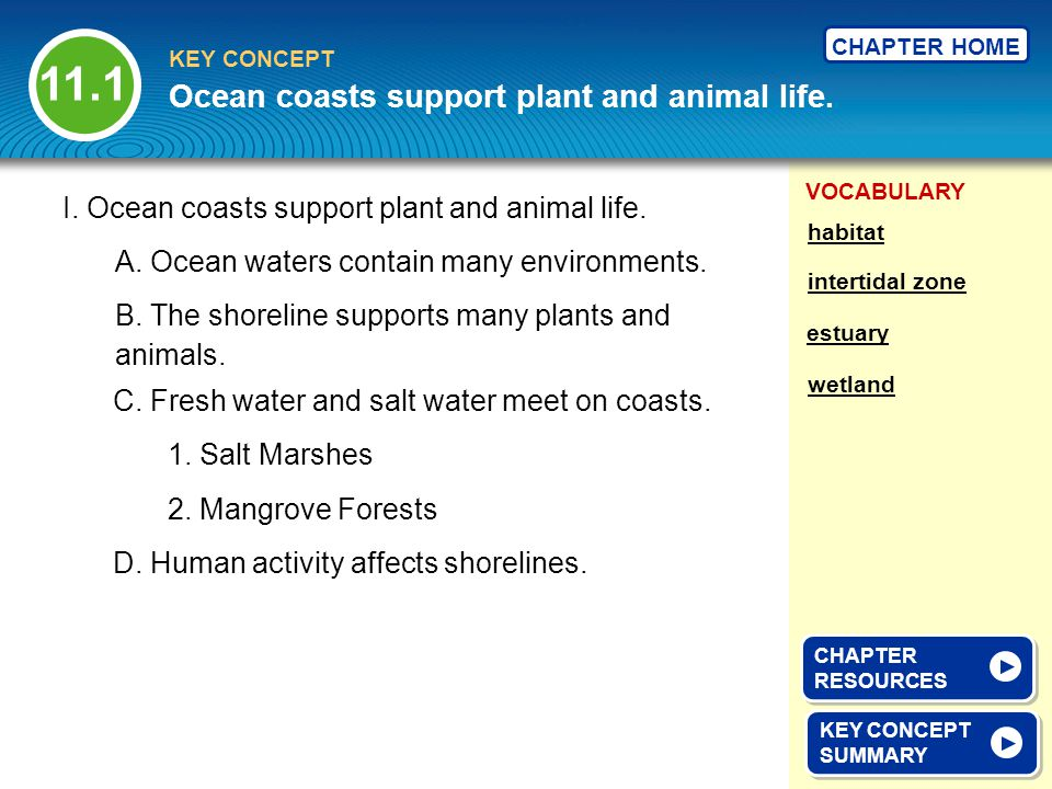 11.1 Ocean coasts support plant and animal life.
