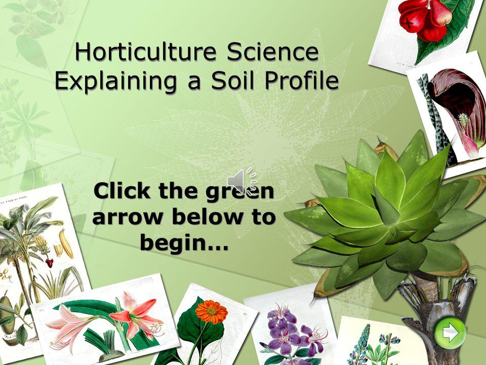 Horticulture Science Explaining a Soil Profile