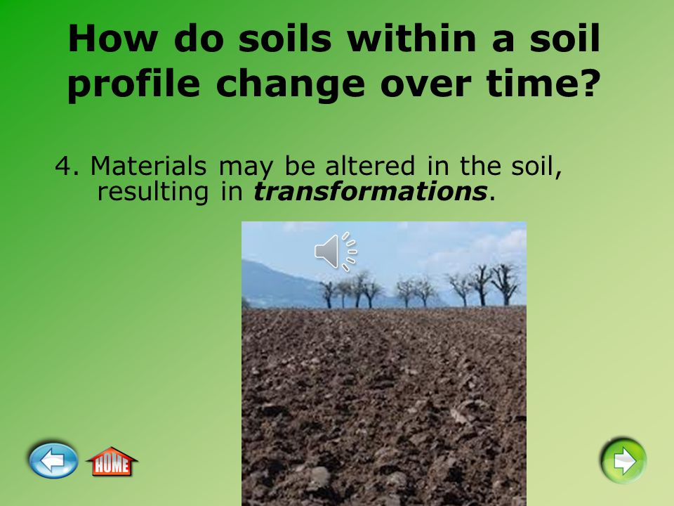 How do soils within a soil profile change over time