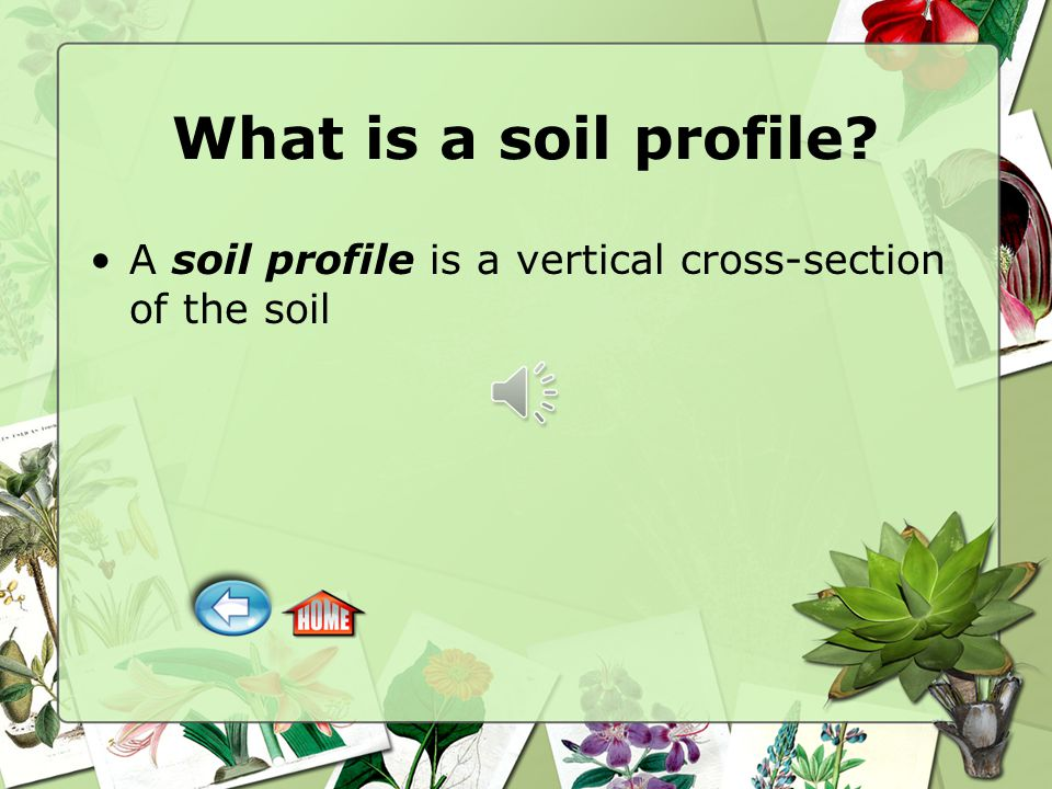 What is a soil profile A soil profile is a vertical cross-section of the soil