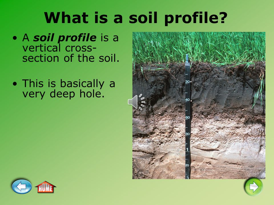 What is a soil profile. A soil profile is a vertical cross-section of the soil.