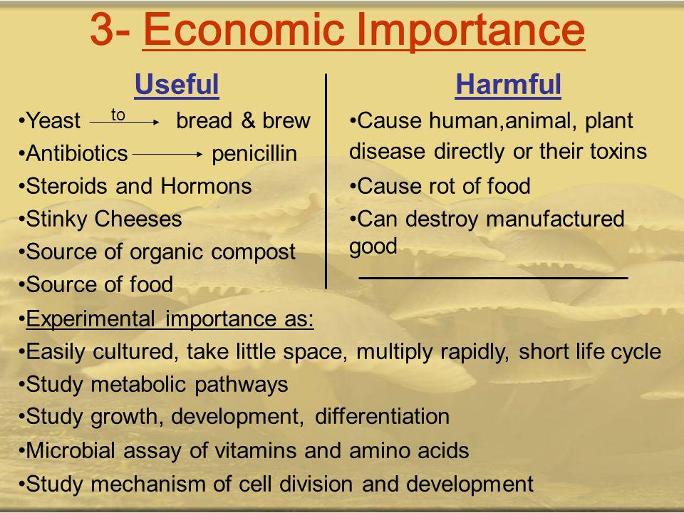 3- Economic Importance Harmful Useful