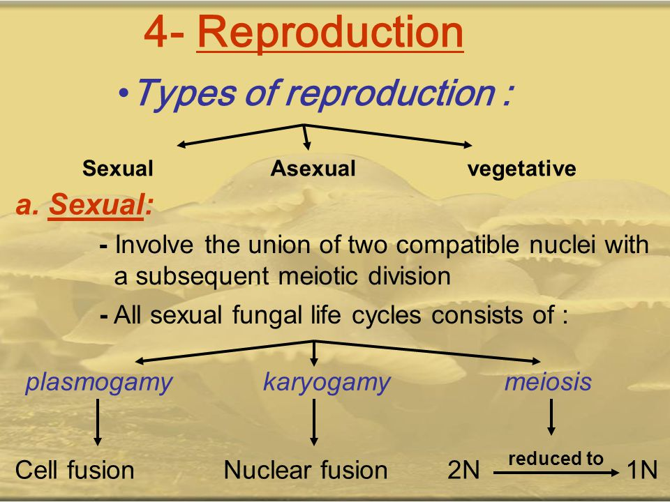 Types of reproduction: