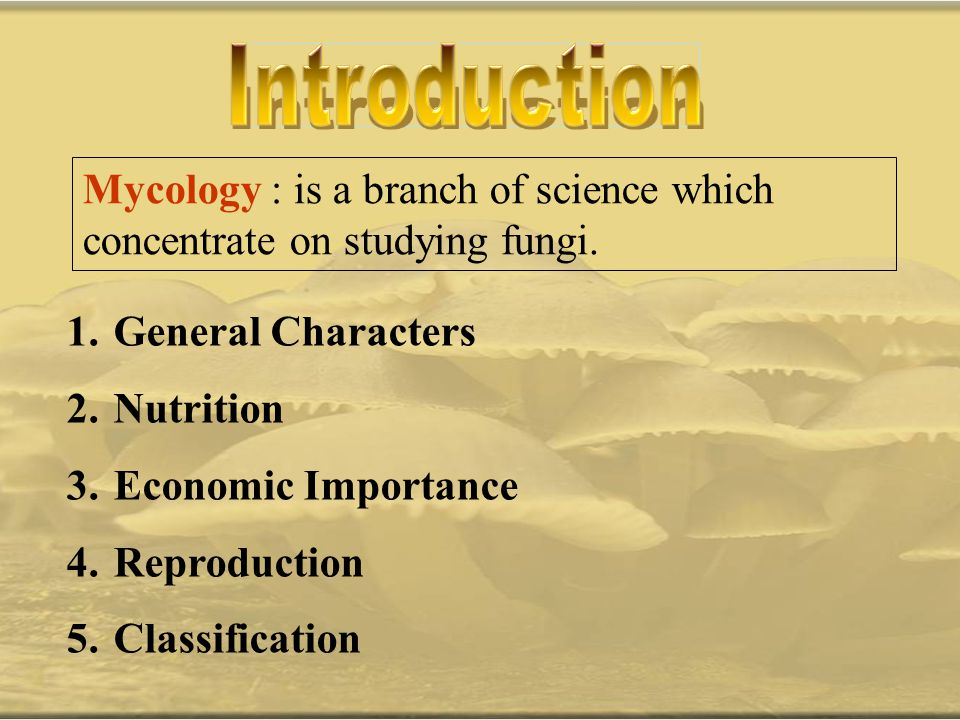 Introduction Mycology : is a branch of science which concentrate on studying fungi. General Characters.
