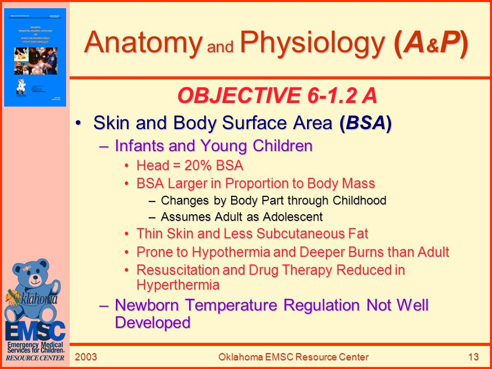 Anatomy and Physiology (A&P)