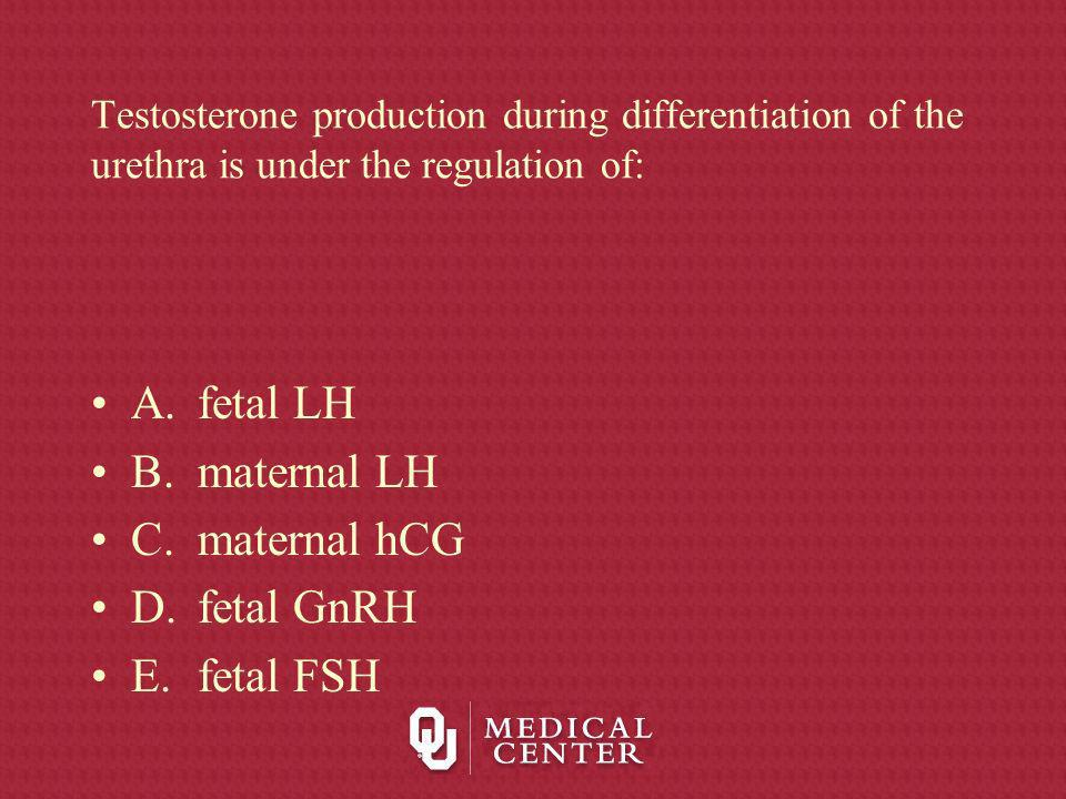 A. fetal LH B. maternal LH C. maternal hCG D. fetal GnRH E. fetal FSH