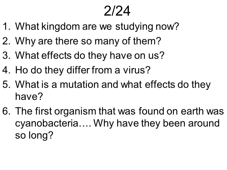 2/24 What kingdom are we studying now Why are there so many of them