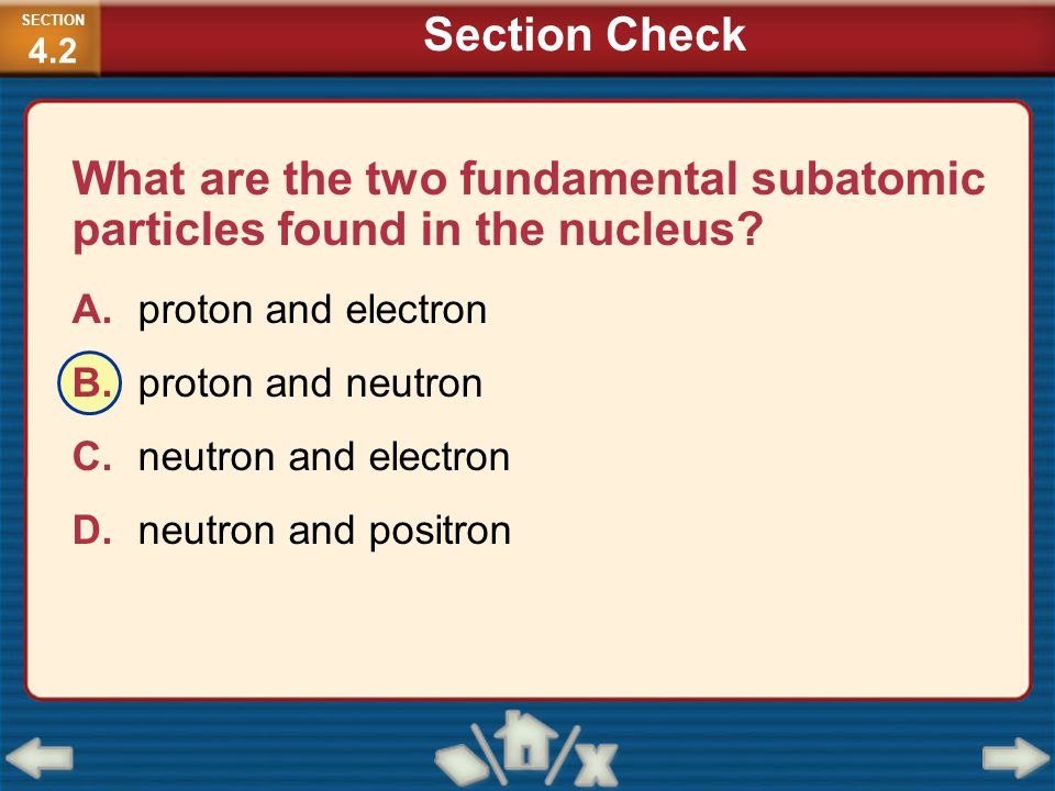 What are the two fundamental subatomic particles found in the nucleus