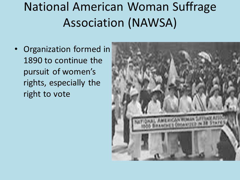 National American Woman Suffrage Association (NAWSA)
